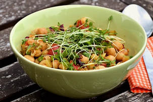 Where You Can Find the Best Pea Shoot Salad Recipe