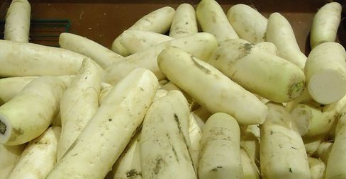 There are wide varieties of Chinese white radishes cultivated
