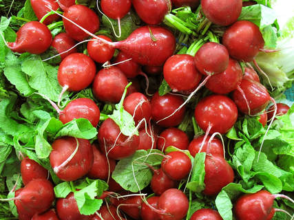 preparing radish salad is one of the simplest things to do