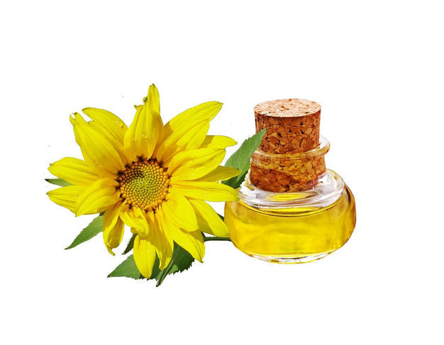 The Sunflower Seed Oil is Rich in Antioxidants
