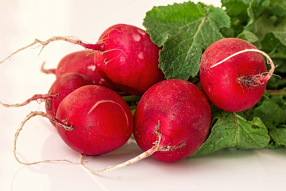 radish salad is very easy and quite refreshing